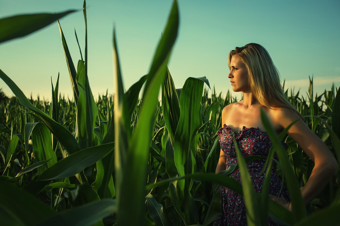 Frau in Sommerkleid im Maisfeld