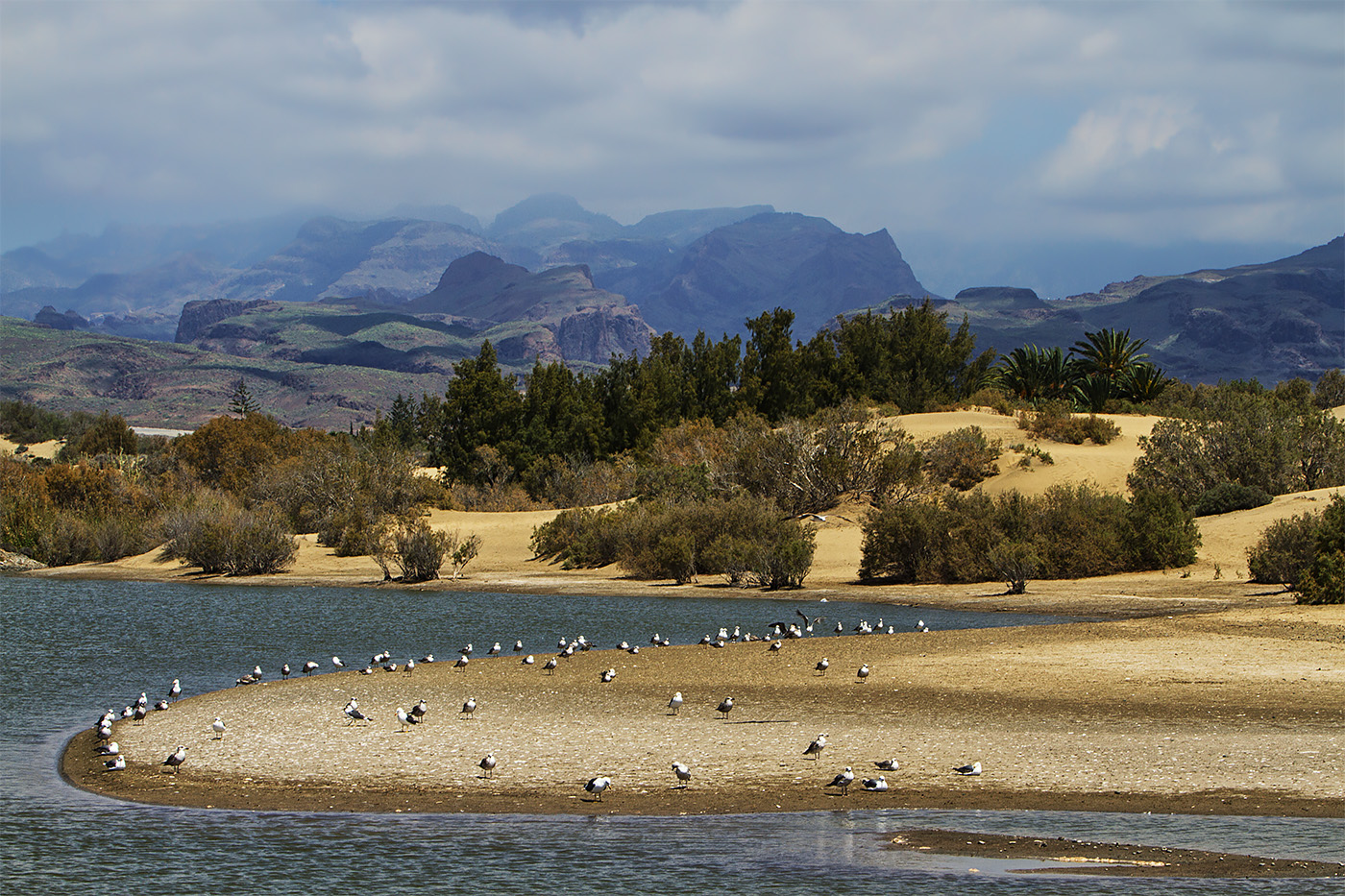 Gran Canaria - Duenen bei Maspalomas