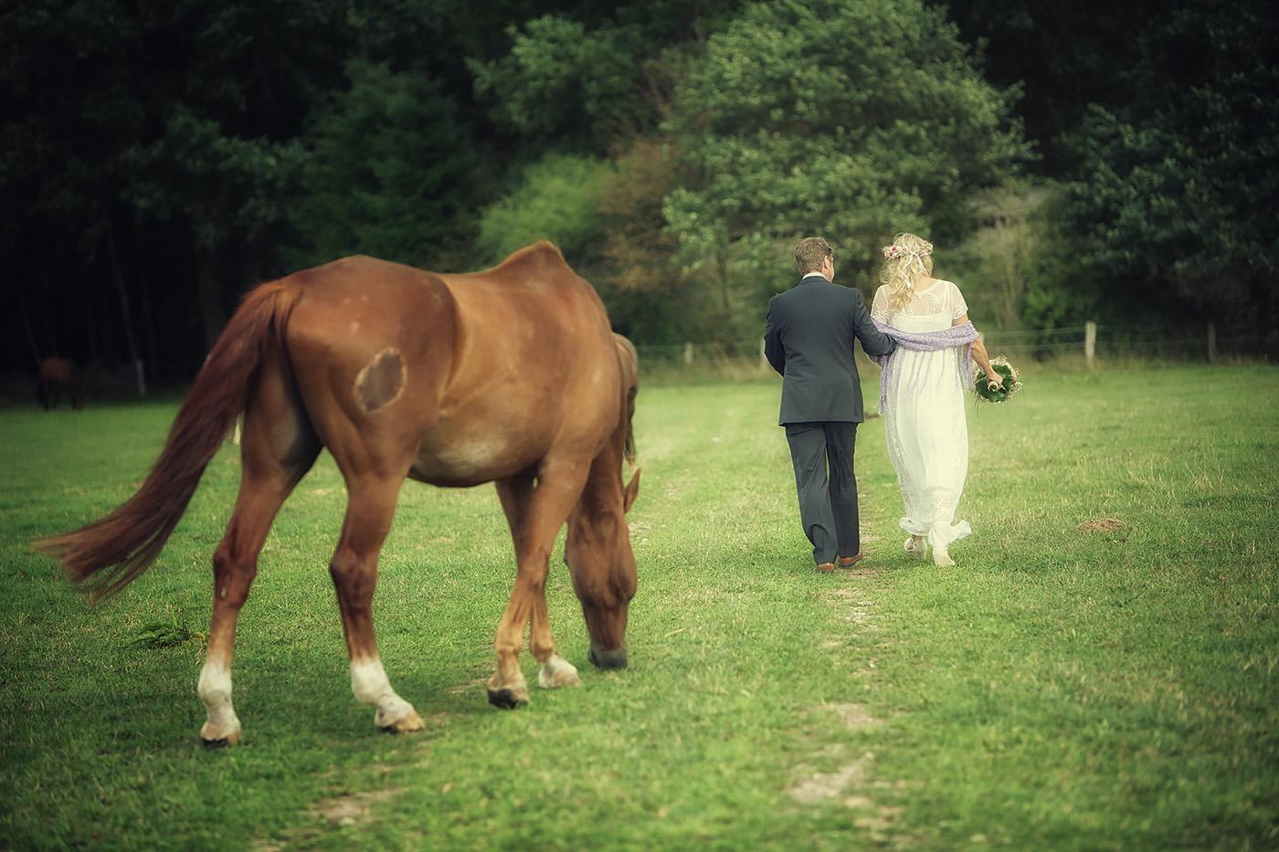 Brautpaar im Feld mit Pferd